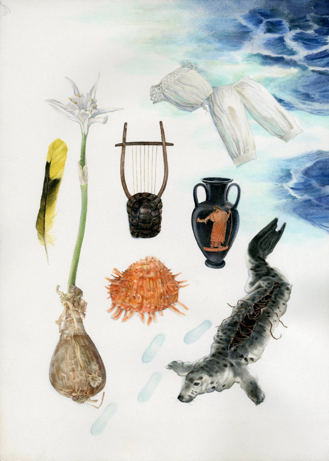 Technical illustration of a herbarium made up with fashionable lolita clothing bordering on edwardian clothing, and an agean sea theme : a shell, a sea daffodil, a greek lyra, a greek vase and a feather collected at Serifos.